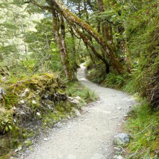 Rob Roy Trail