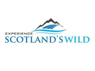 scotlands wild guided walking tours