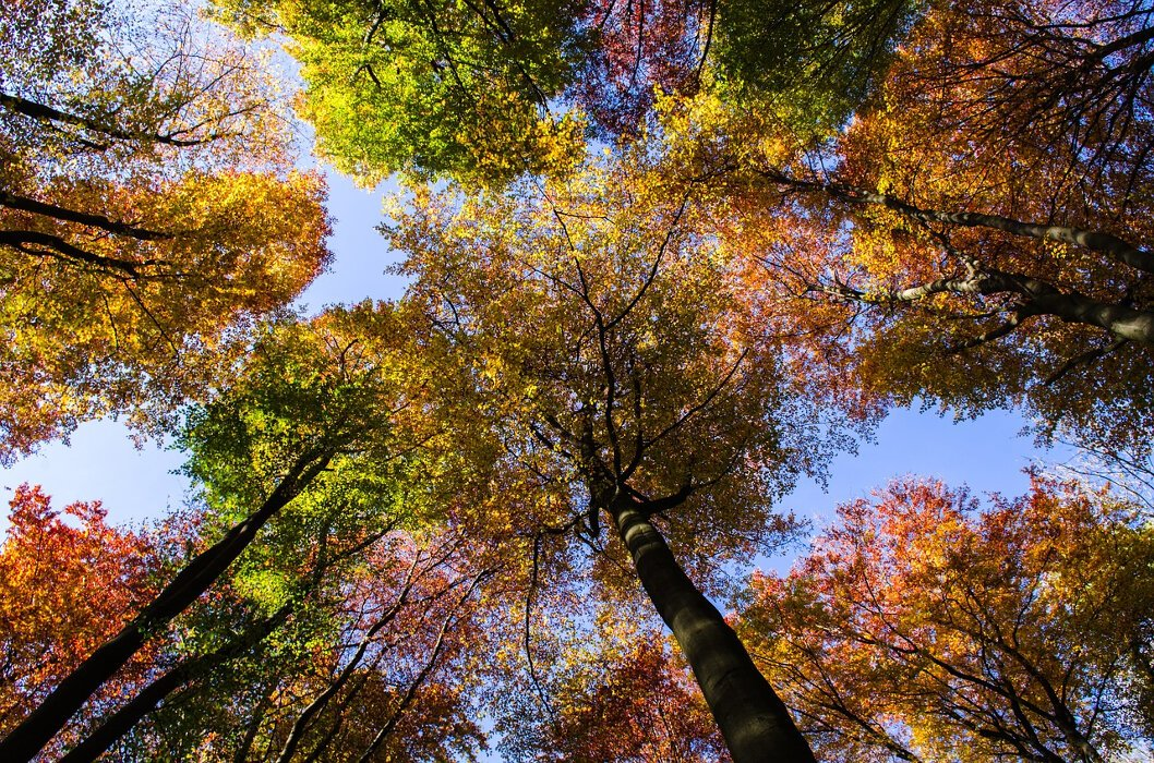 October Breaks in Loch Lomond