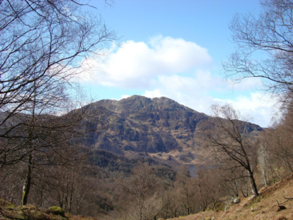 Ben Venue Forest Walk